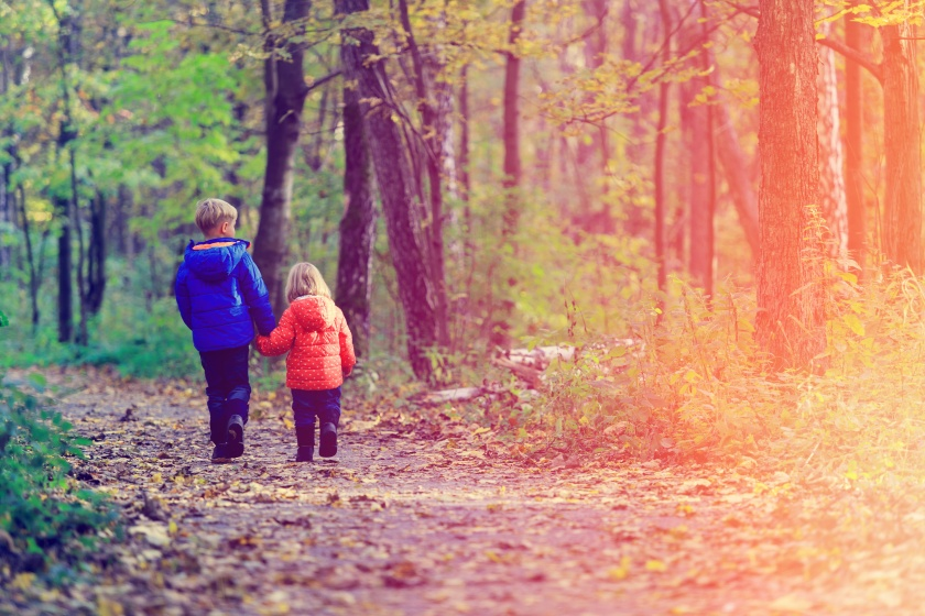 little boy and girl walk in autumn forest